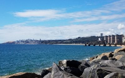 Colleen Szeto reflects on the 3rd International Flavor & Fragrance Conference, Viña del Mar, Chile