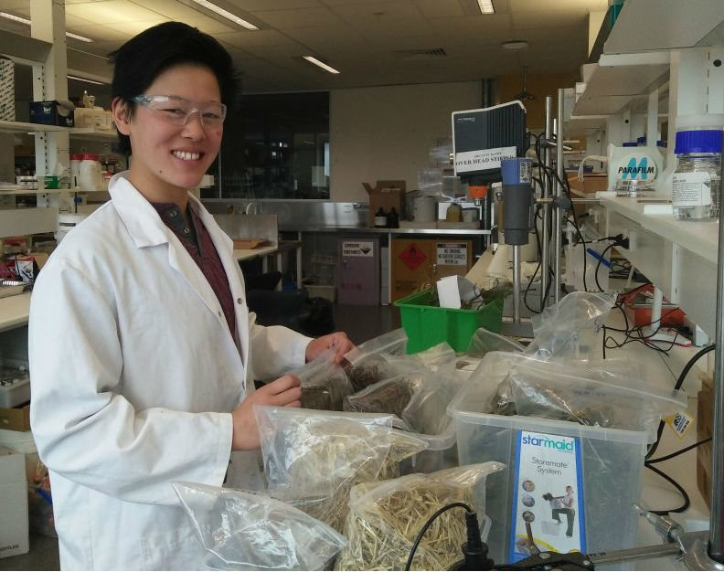 Meet Colleen Szeto – PhD student in the ARC TC-IWP